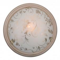 Настенно-потолочный светильник в стиле модерн | 256